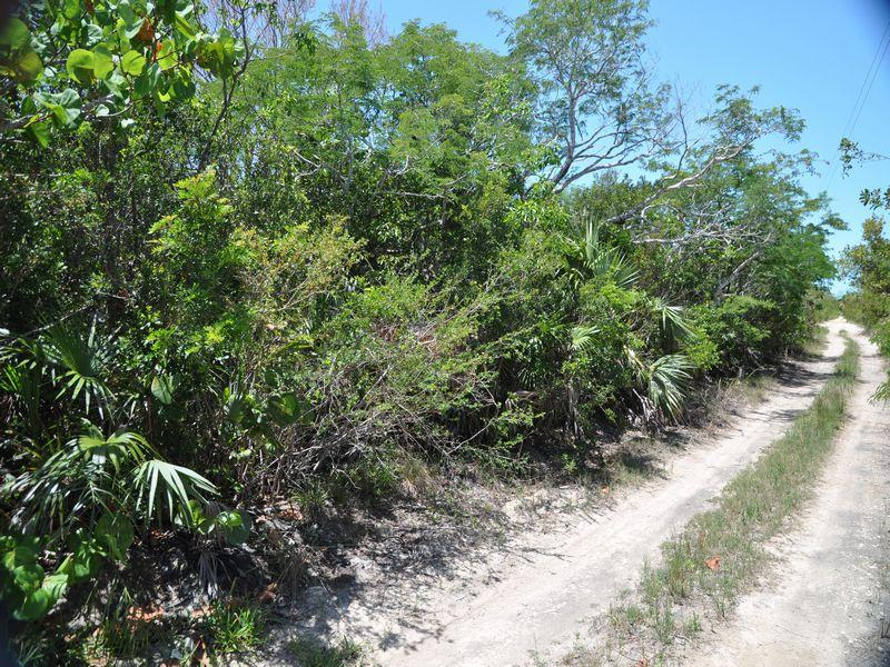 Additional photo for property listing at Harbour Hills Lot 14 Amberjack Road- Harbour Hills Georgetown, Exuma . Bahamas