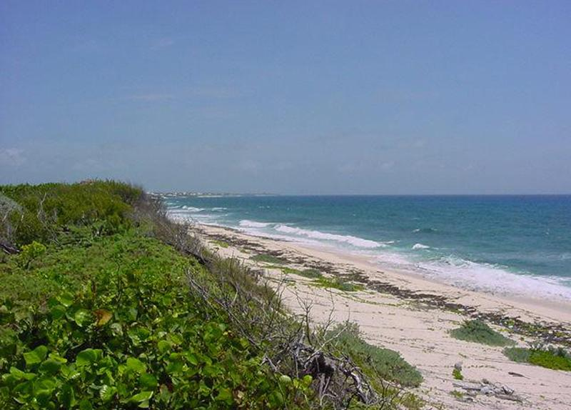 Additional photo for property listing at Tilloo Beach Subdivision Lot 27  Tilloo Cay, 阿巴科 0 巴哈马