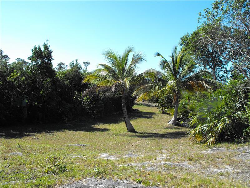 Additional photo for property listing at Cedar Harbour Coopers Town, Abaco Bahamas