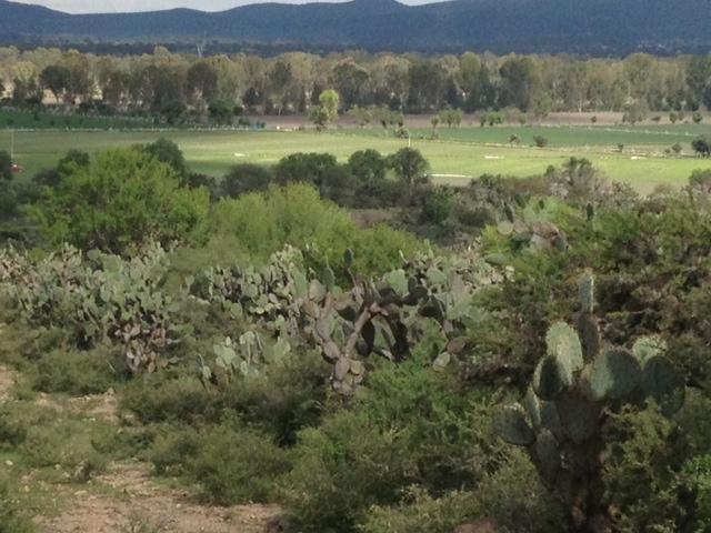 Farm / Ranch / Plantation for Sale at Rancho Corral de Piedras San Miguel De Allende, Guanajuato 37700 Mexico