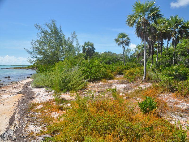 Additional photo for property listing at Lot 27 George Town, Exuma Bahamas