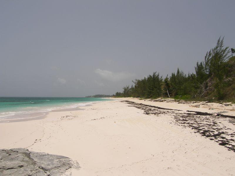 Additional photo for property listing at Angel Cove Bank's Road Palmetto Point, Eleuthera 0 Bahamas