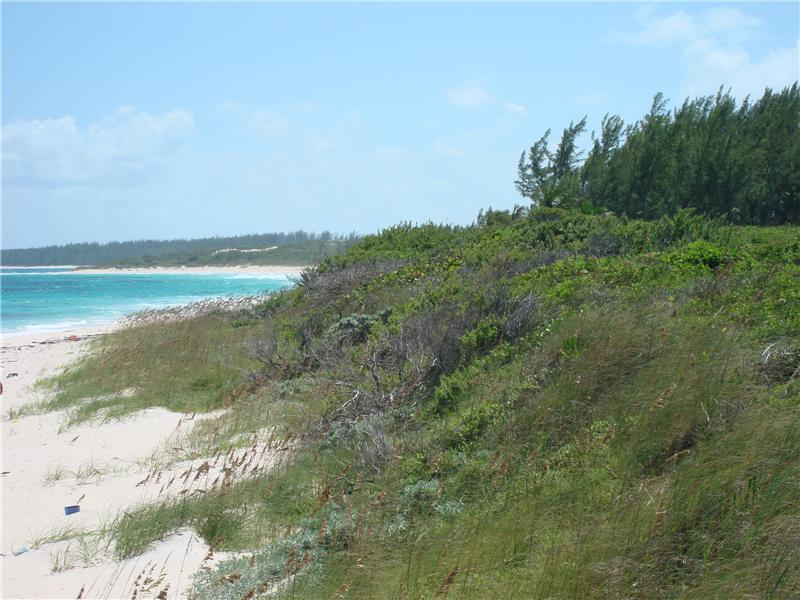 Additional photo for property listing at Atlantic Beachfront Airport Beach, Governors Harbour, Eleuthera Bahamas