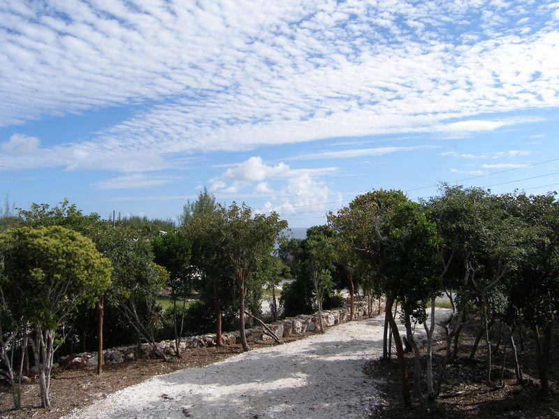 Land for Sale at Groomed Residential Lot Wandering Shore Drive Rainbow Bay, Eleuthera . Bahamas