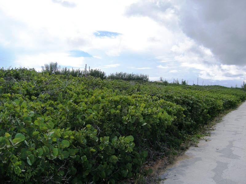 Land for Sale at Lot 38, Block 42, Section C Rainbow Bay, Eleuthera Bahamas