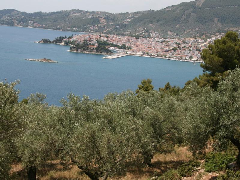 Property Of Skiathos Panorama