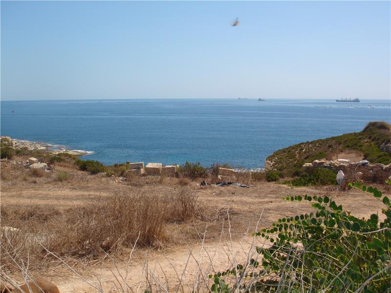 Seafront Shoreline Farmland