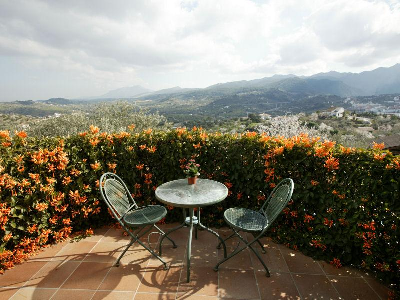 Property Of Delightful Finca with ancient olive grove