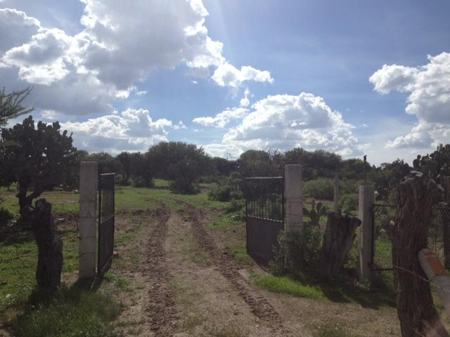 Additional photo for property listing at Rancho Corral de Piedras  San Miguel De Allende, Guanajuato 37700 Mexico