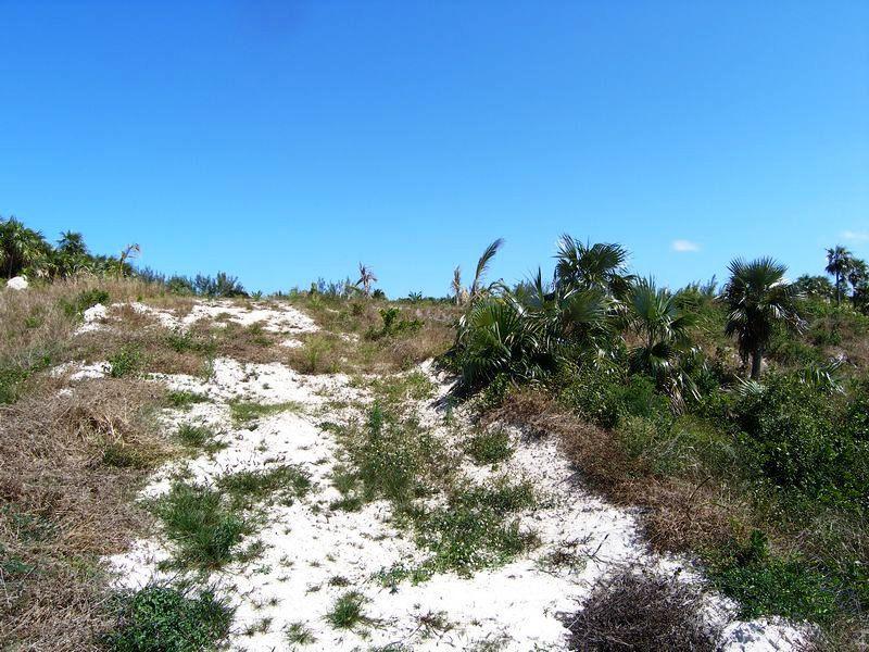 Additional photo for property listing at Spectacular Windermere Lot Windermere Island, Eleuthera Bahamas
