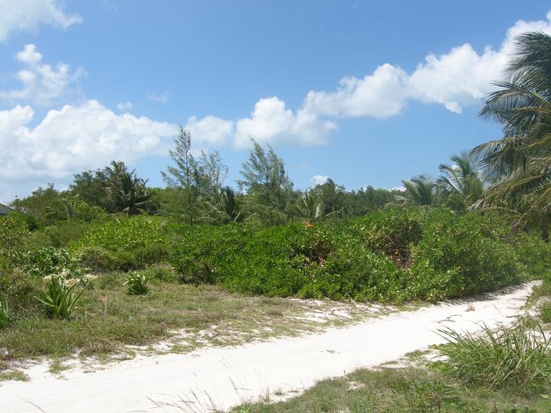Property For Sale at Beachside