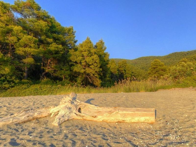Property Of Skopelos Beachfront Plot