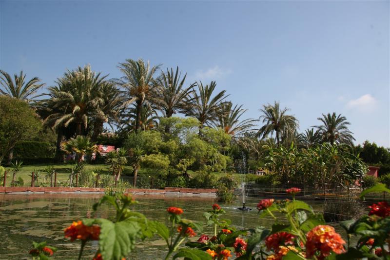 "Property Of Casa ""El Galapago"" Andalusian cortijo"