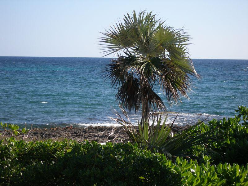 Additional photo for property listing at Windermere Waterfront Lot Windermere Island, Eleuthera Bahamas