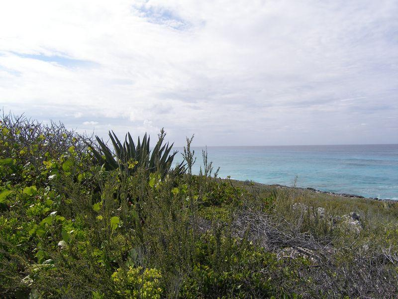 Additional photo for property listing at Rainbow Bay Waterview Lots Rainbow Bay, Eleuthera Bahamas
