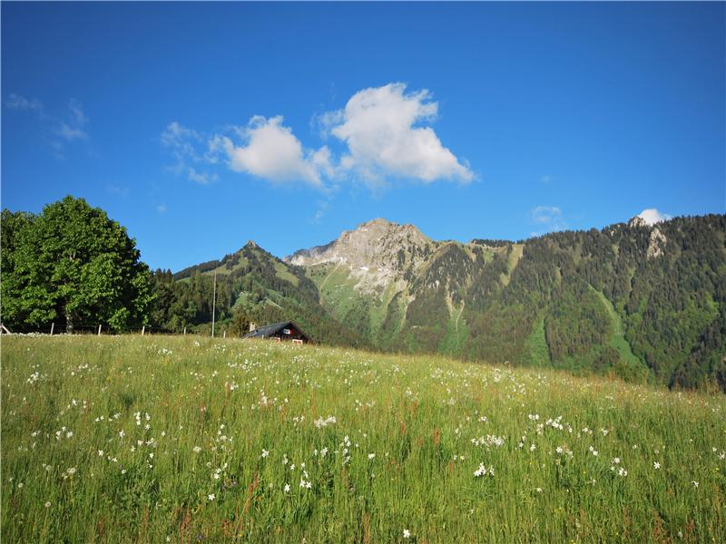 Property Of Exceptional plot of 13,758 m2 with 360° views