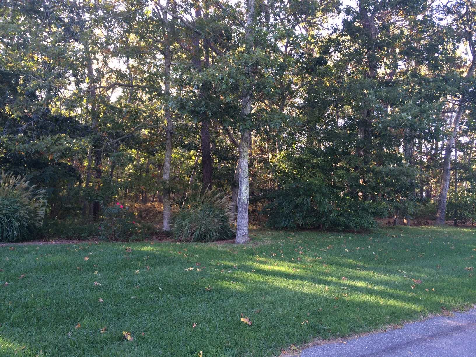 Land for Sale at 2 Oyster Pond Road, Harwich, MA Harwich, Massachusetts, 02645 United States