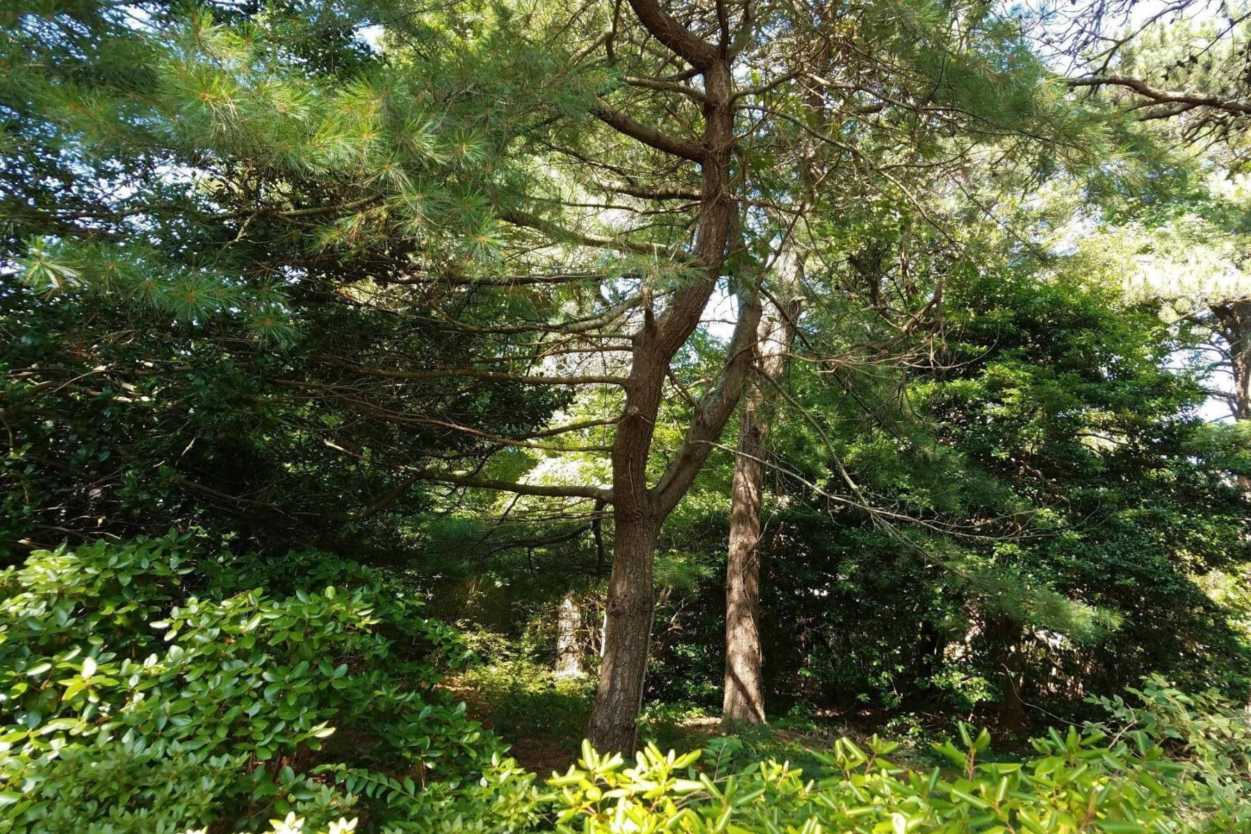 Land for Sale at 6 Merrymount Road, Yarmouth, MA 6 Merrymount Road Yarmouth, Massachusetts 02673 United States