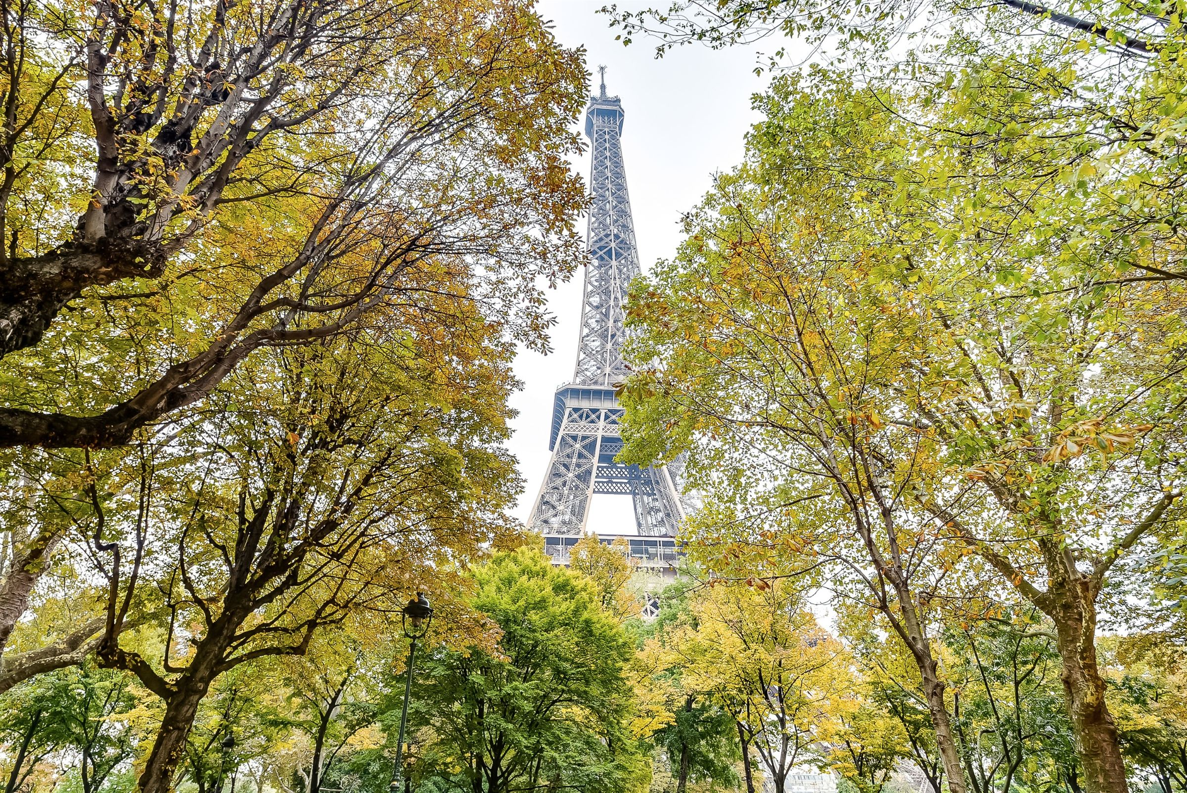 Property For Sale at Paris 7 - Champ de Mars. Apartment. Eiffel Tower view.