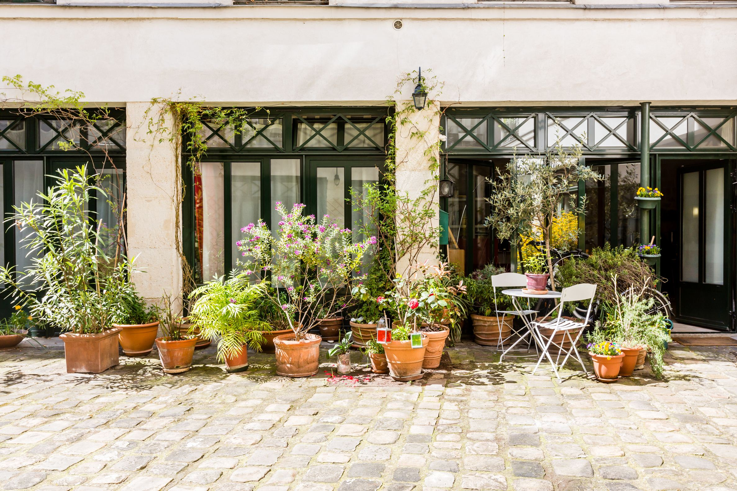 sales property at Jardin des Plantes, Paris 5th