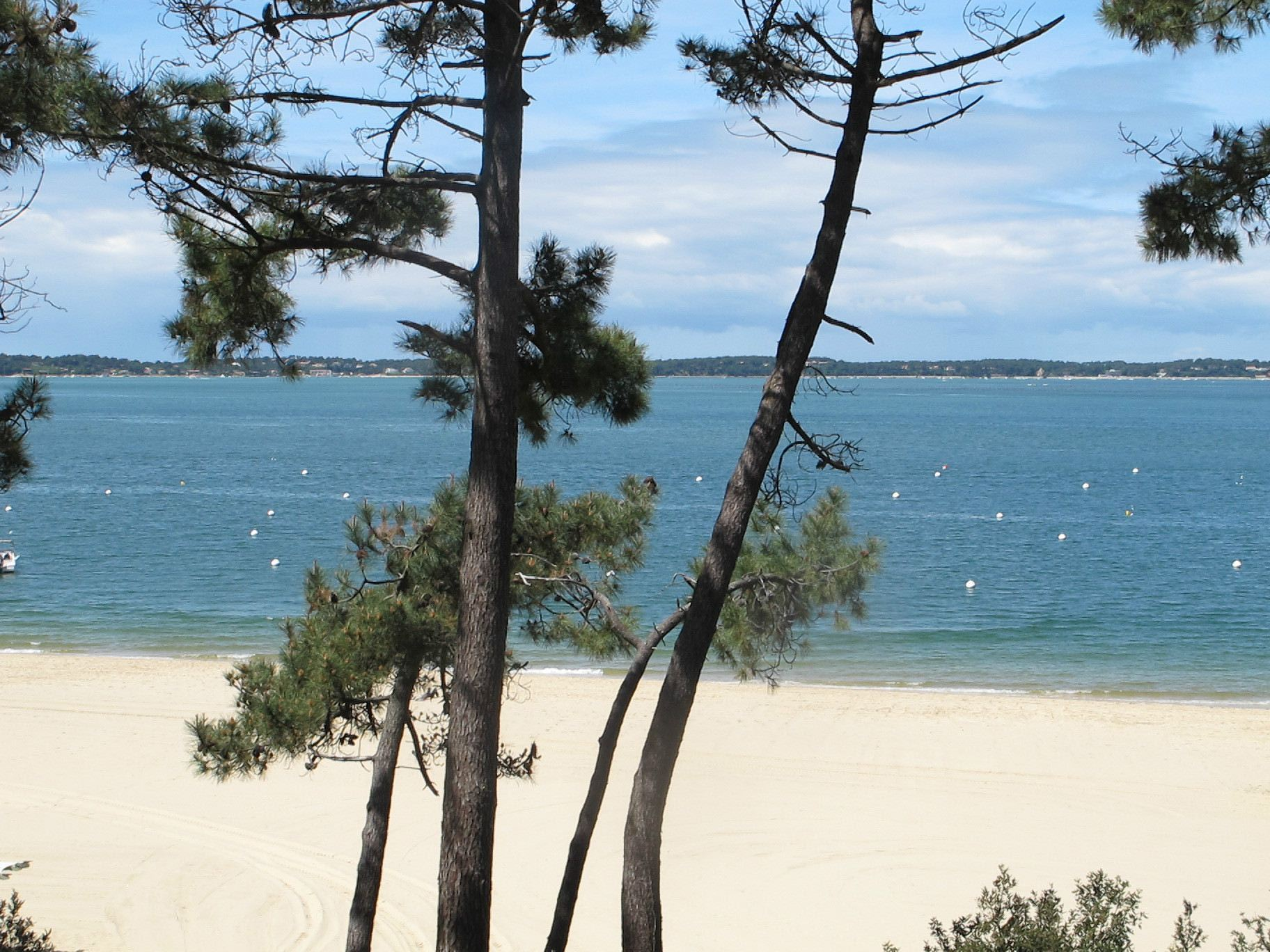 Property For Sale at ARCACHON - FRONT LINE VILLA