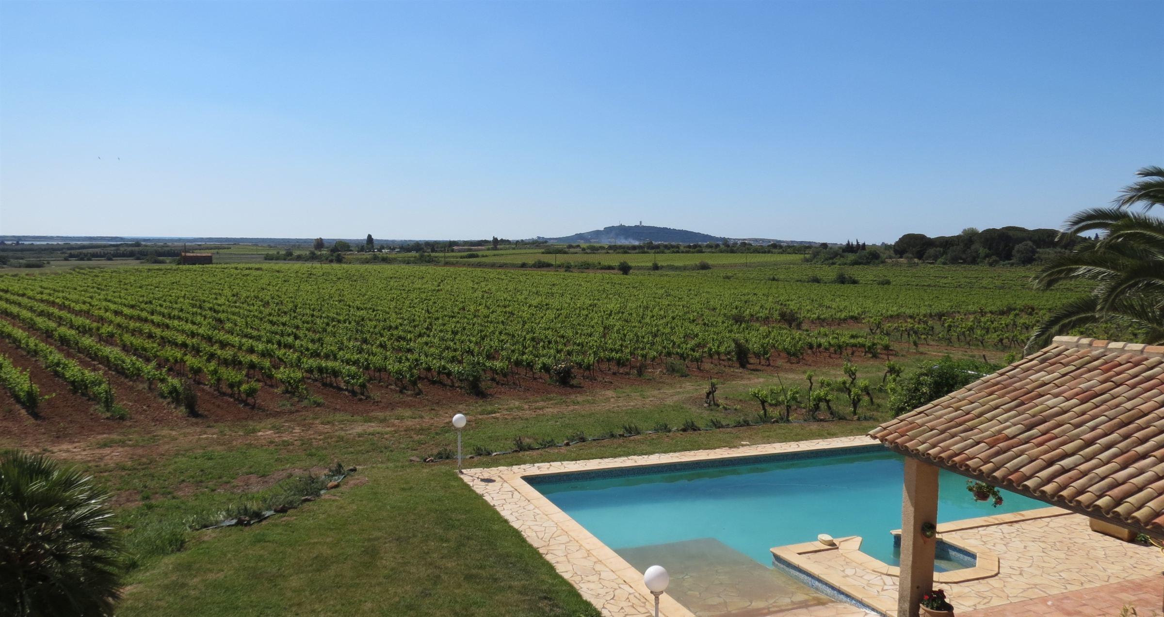 sales property at Vineyard