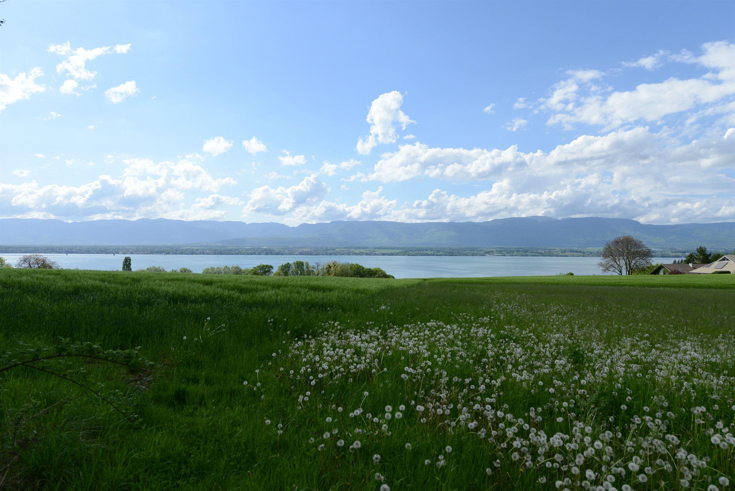 地產 為 出售 在 Land Other Rhone-Alpes, 羅納阿爾卑斯, 74140 法國