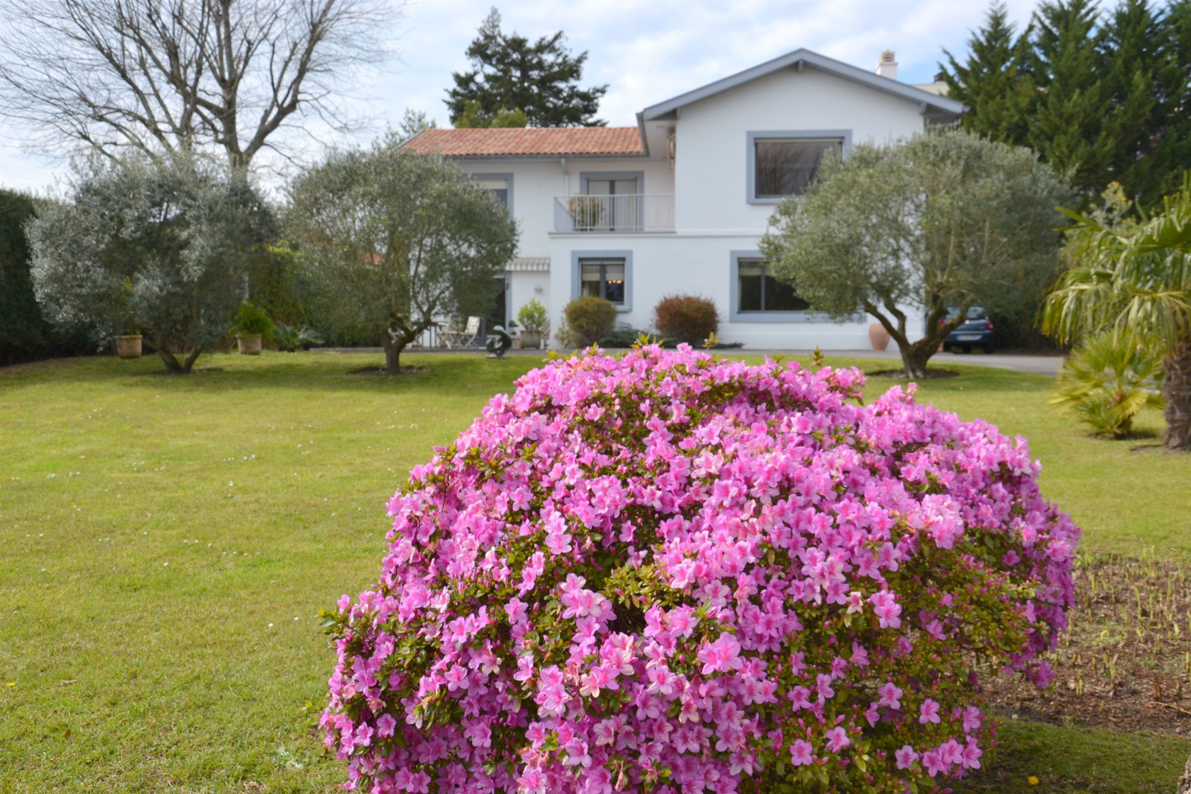 Single Family Home for Sale at Biarritz Le Parc d'Hiver Biarritz, Aquitaine, 64200 France