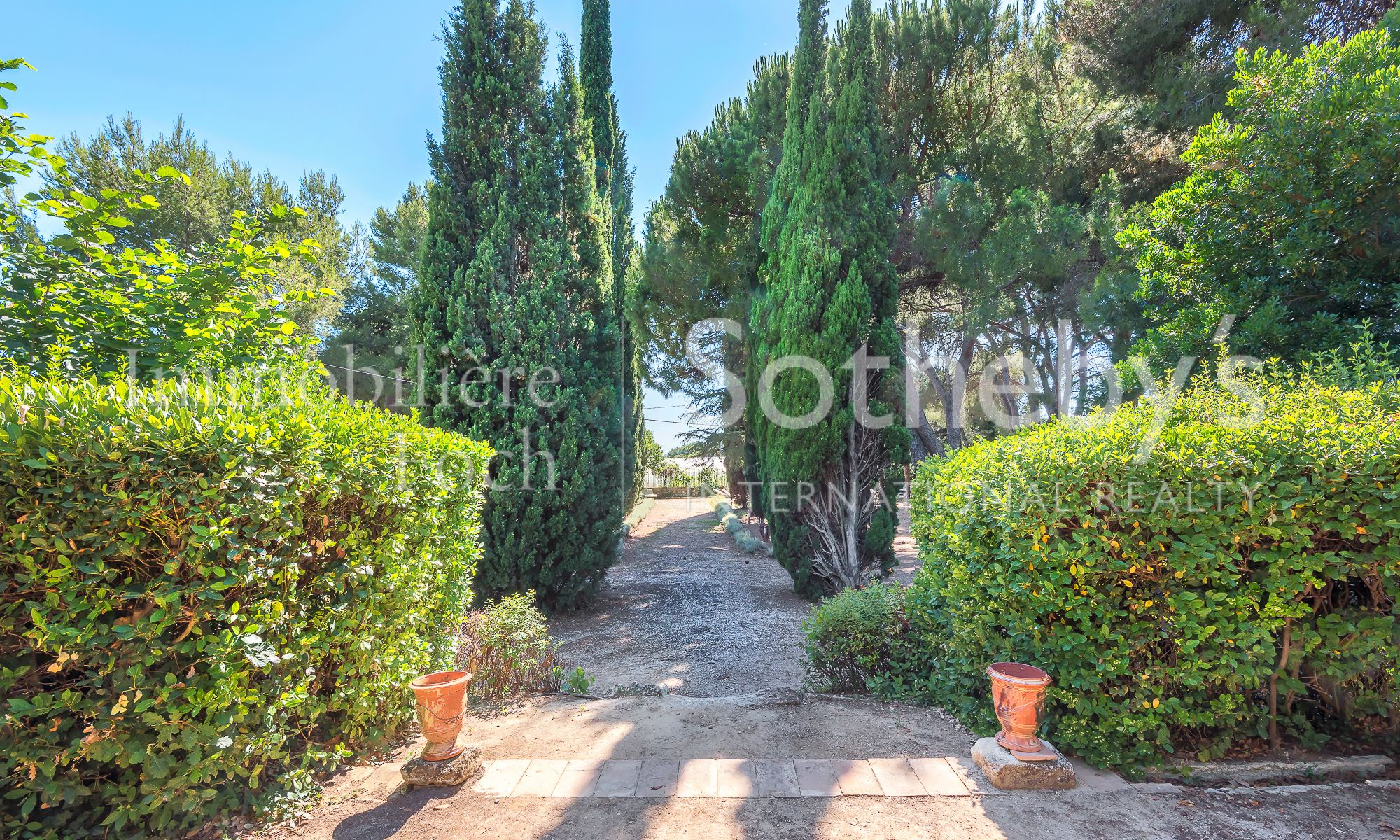Property For Sale at Vineyard