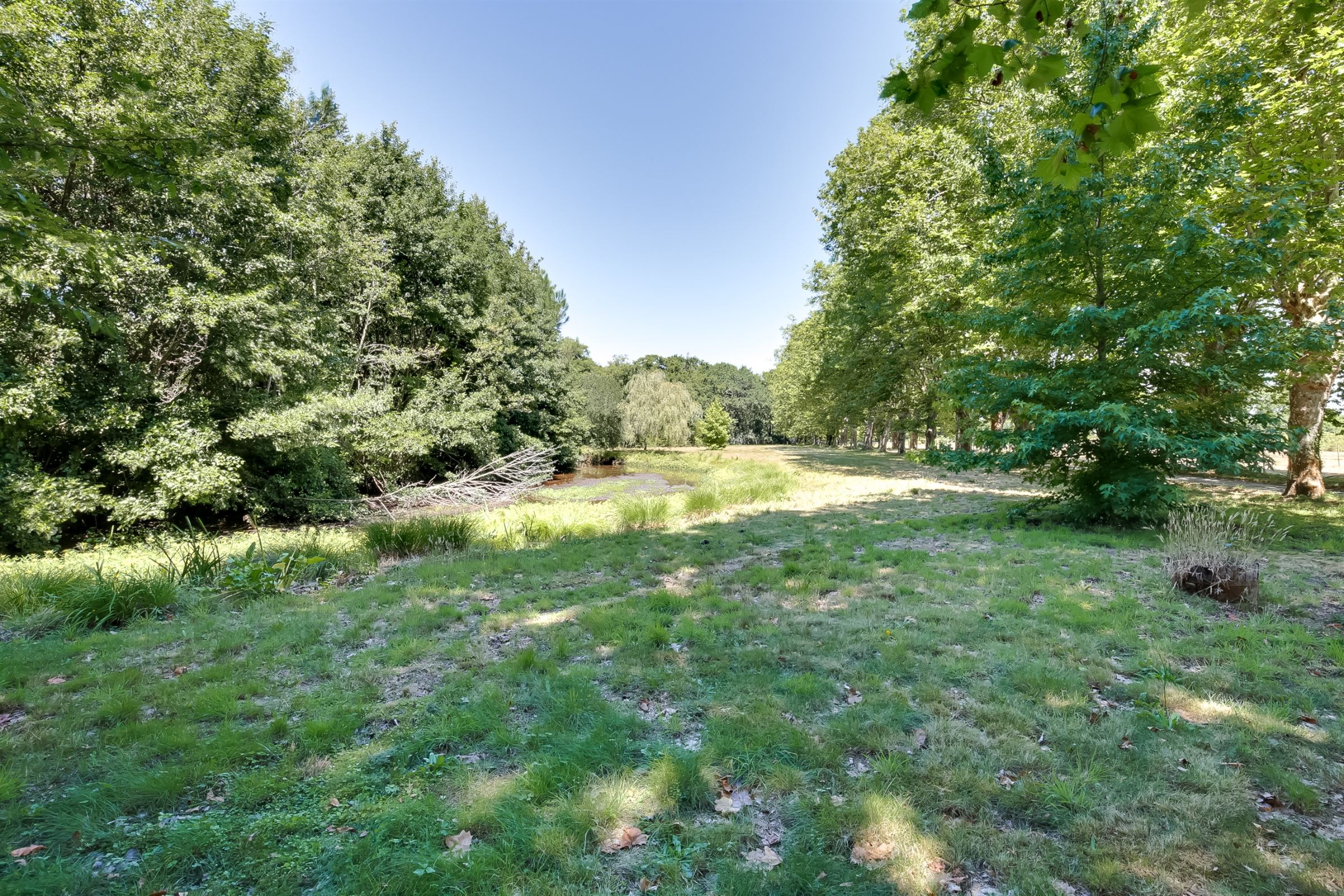 sales property at AMAZING PROPERTY WITH ITS 5 ACRES LAND