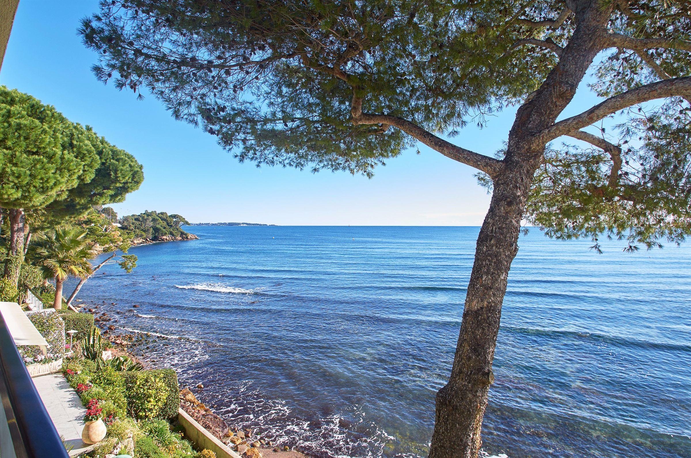 アパート のために 売買 アット Waterfront apartment in Cannes Eden - Sea views Cannes, プロバンス=アルプ=コート・ダジュール, 06400 フランス
