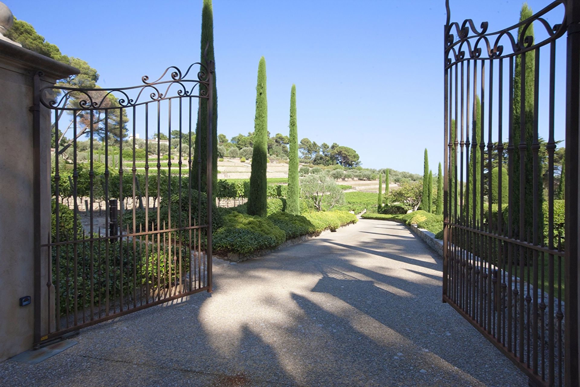 sales property at Magnificient vineyard in Mougins