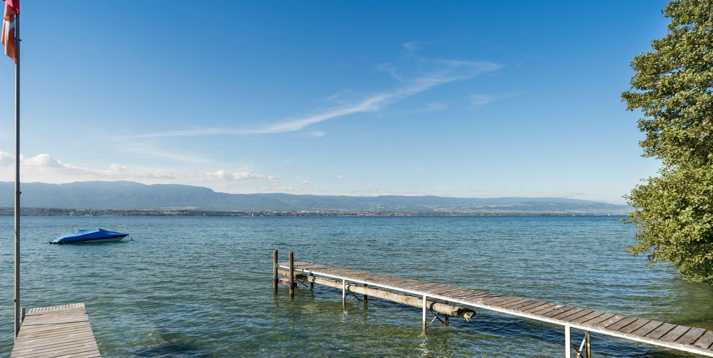 獨棟家庭住宅 為 出售 在 CHENS : Villa private dock Other Rhone-Alpes, 羅納阿爾卑斯, 74140 法國