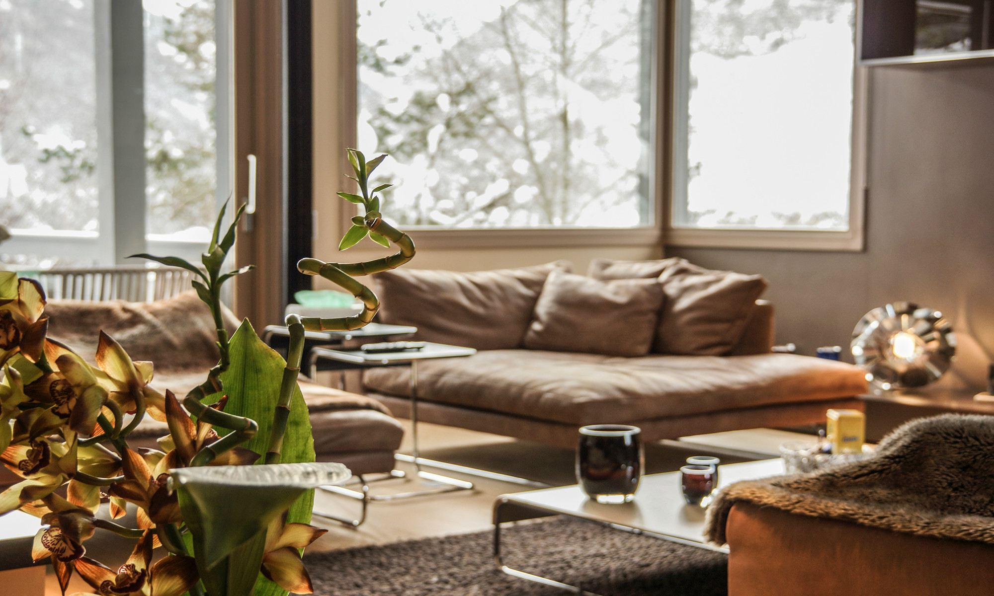 Property For Sale at Courchevel Chalet Astragle