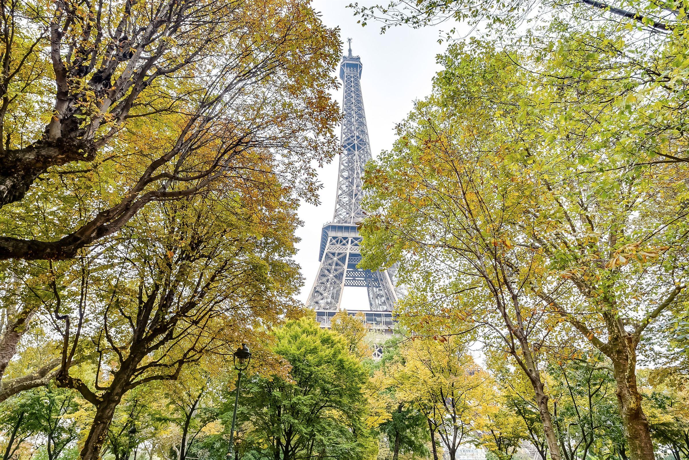 sales property at Paris 7 - Champ de Mars. Apartment. Eiffel Tower view.