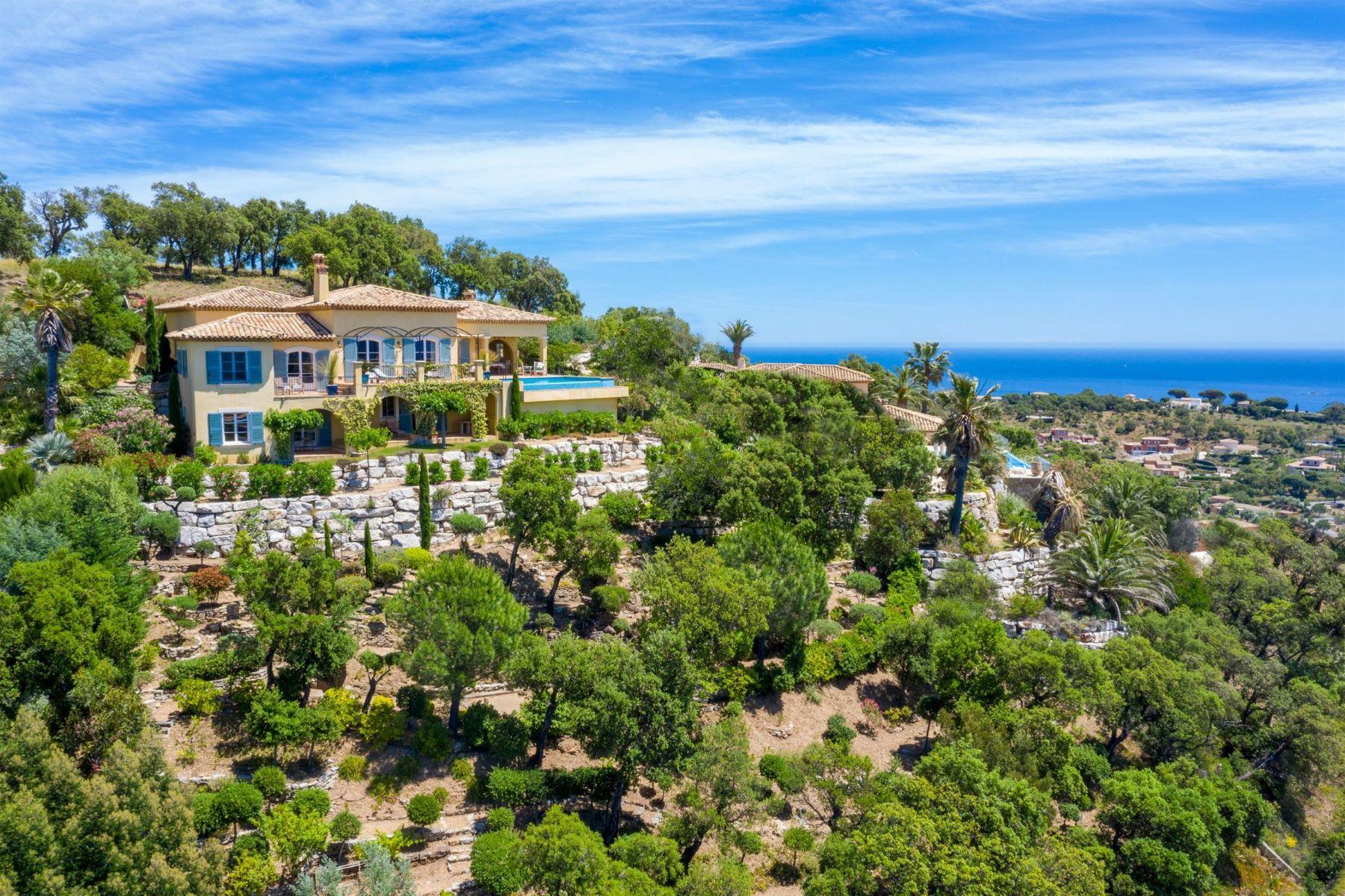 Single Family Homes por un Venta en Provencal house Sainte Maxime, Provincia - Alpes - Costa Azul 83120 Francia