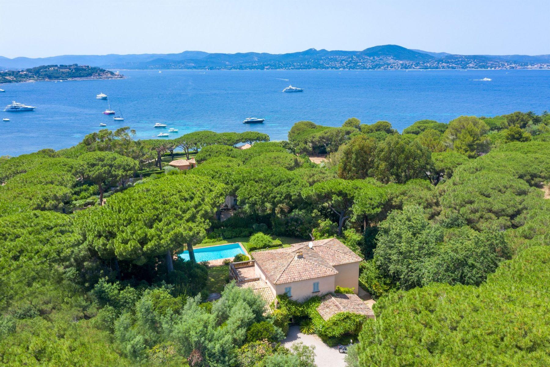 Single Family Homes por un Venta en Les parcs de Saint-Tropez - Luxury villa for sale Saint Tropez, Provincia - Alpes - Costa Azul 83990 Francia
