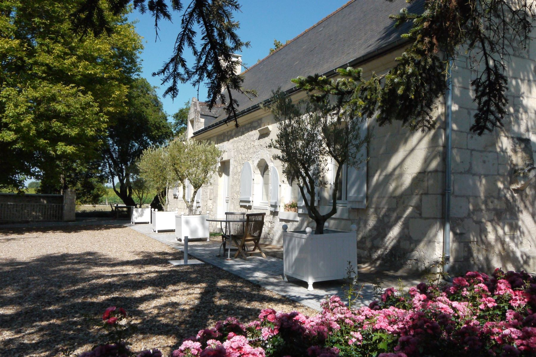 Single Family Homes for Active at Nice house in the middle of Bourgueil vineyards Bourgueil, Centre 37140 France