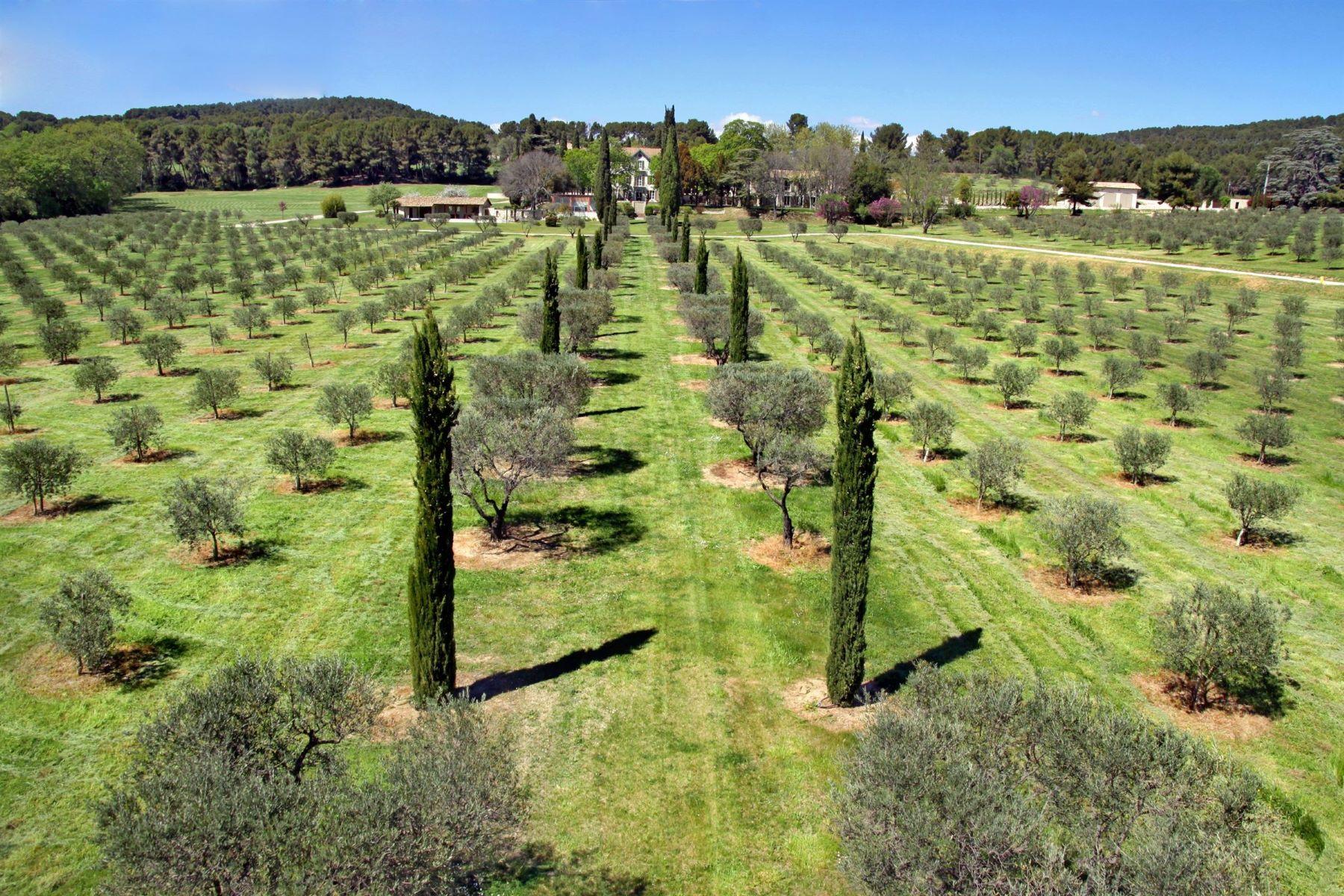 Single Family Homes por un Venta en Aix en Provence - 25 acres Aix-En-Provence, Provincia - Alpes - Costa Azul 13100 Francia