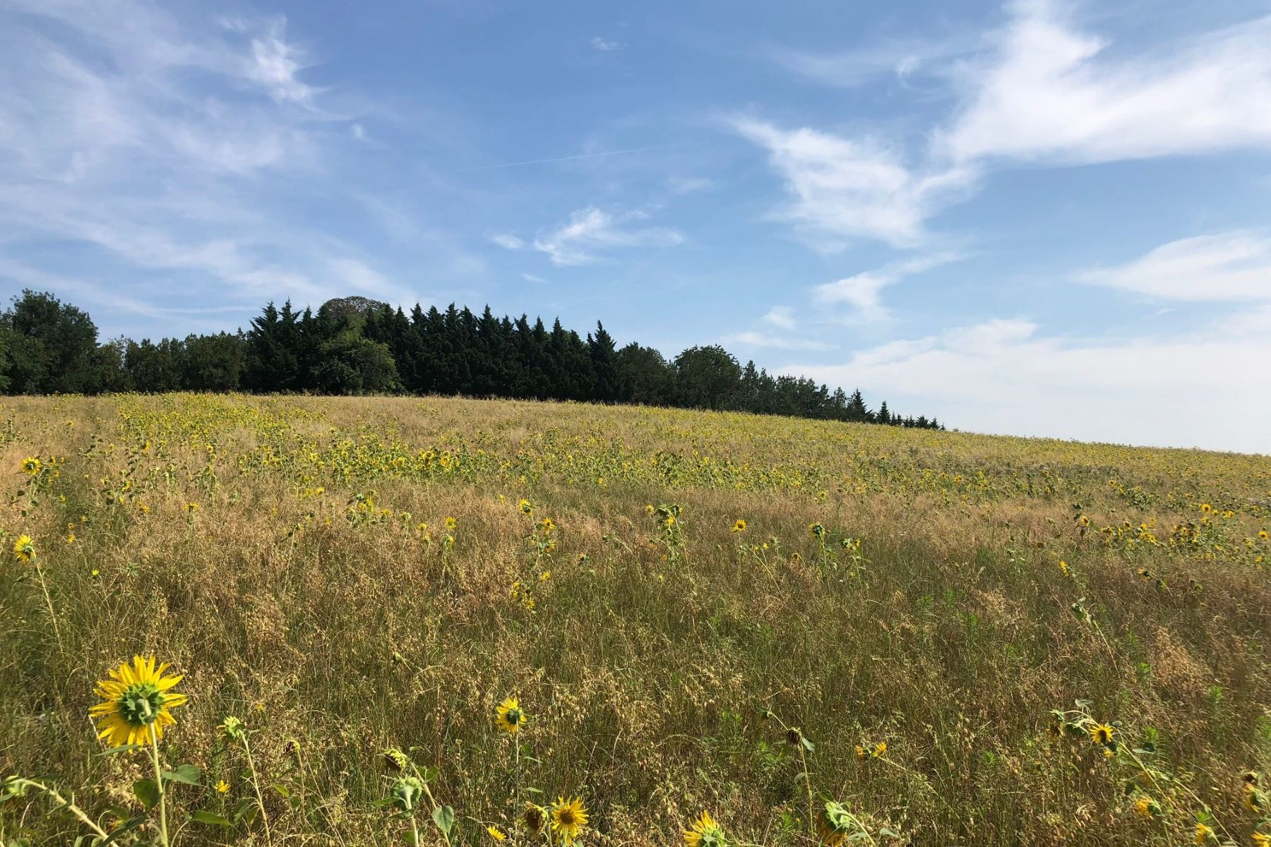 Land for Sale at Agricultural land Lavaur, Midi Pyrenees 81500 France