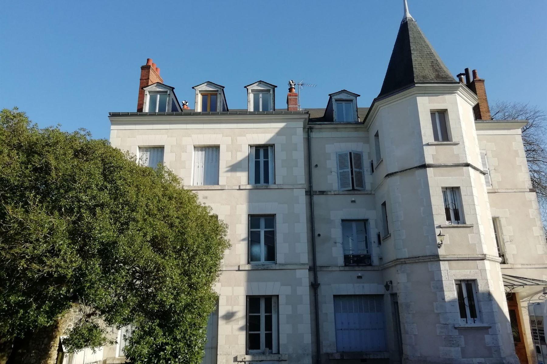 Apartments for Active at Apartment view Loire Blois, Centre 41000 France