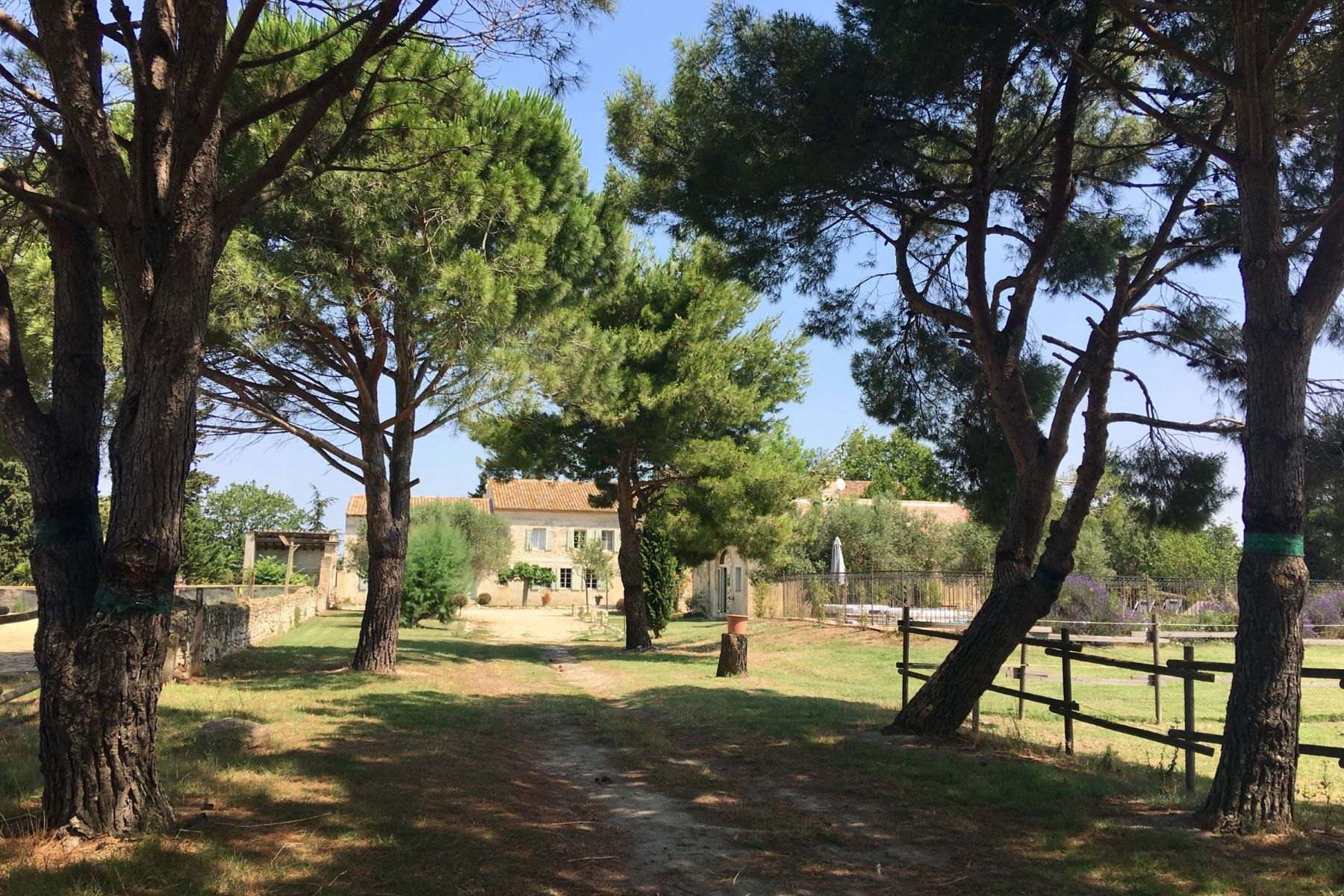 Single Family Homes por un Venta en 10 KM d'Arles, mas rénové et ses dépendances Arles, Provincia - Alpes - Costa Azul 13200 Francia