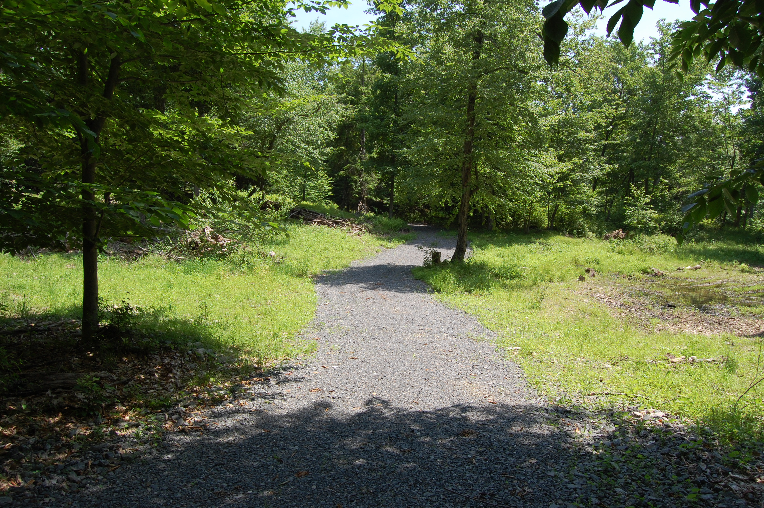 Land for Sale at Wonderful lots ready for your dream home and space for an equestrian Sky Farm Rd Copake, New York 12516 United States