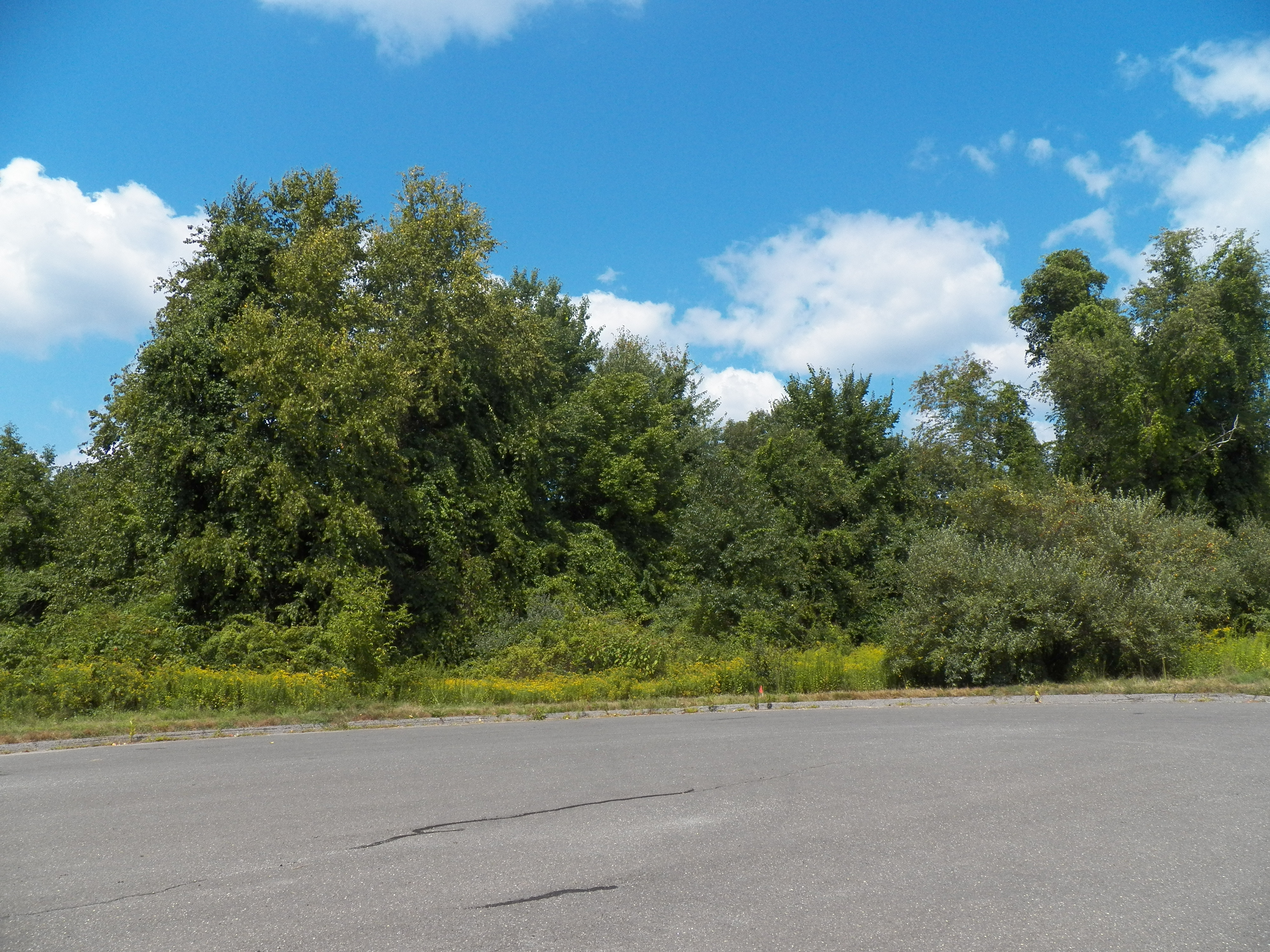 Land for Sale at Quiet Cul De Sac 21 Stone Oak Dr New Milford, Connecticut 06776 United States