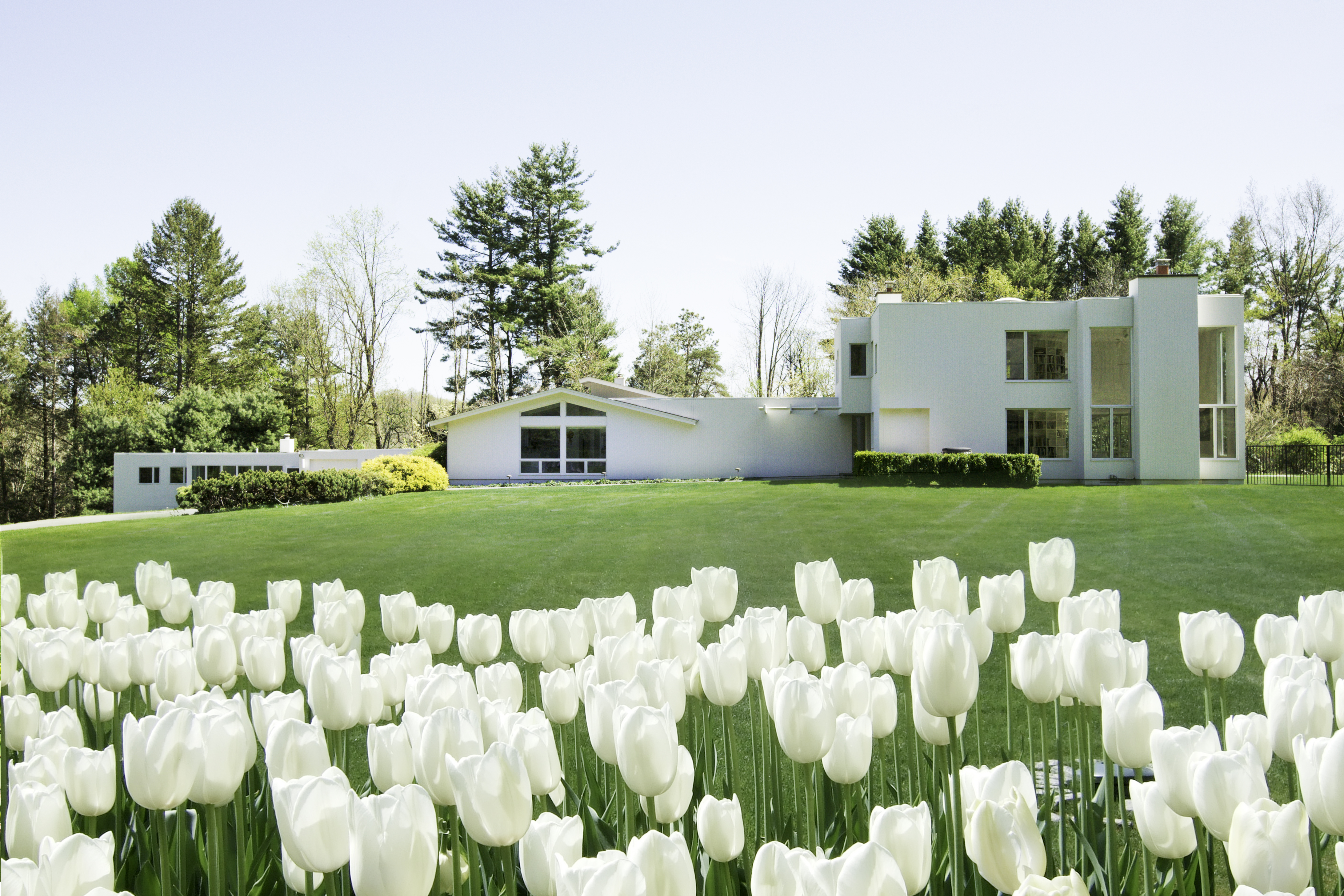 Property For Sale at Mid-Century Inspired Artful Living