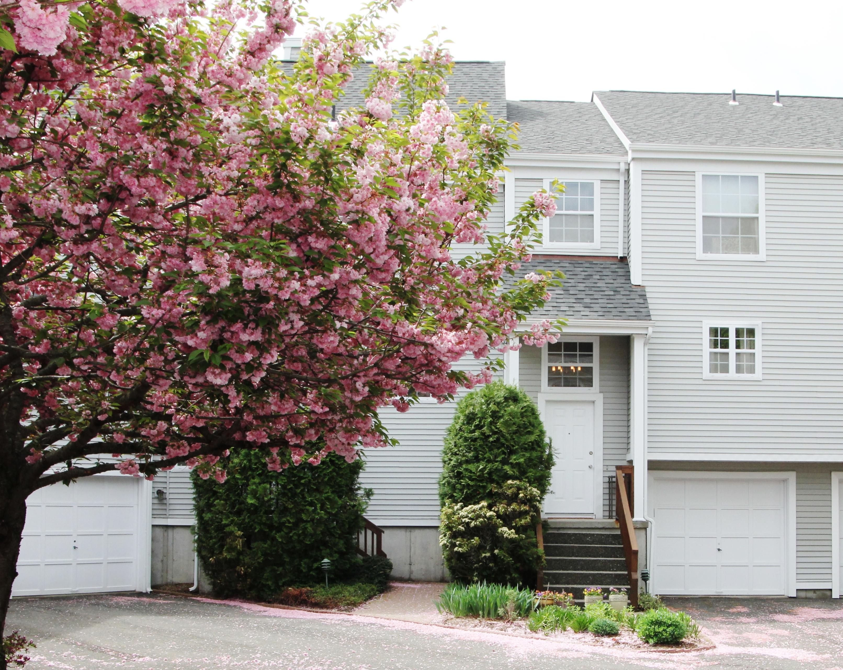 Condomínio para Venda às Norwalk Townhouse 506 Foxboro Drive 506 Norwalk, Connecticut 06851 Estados Unidos