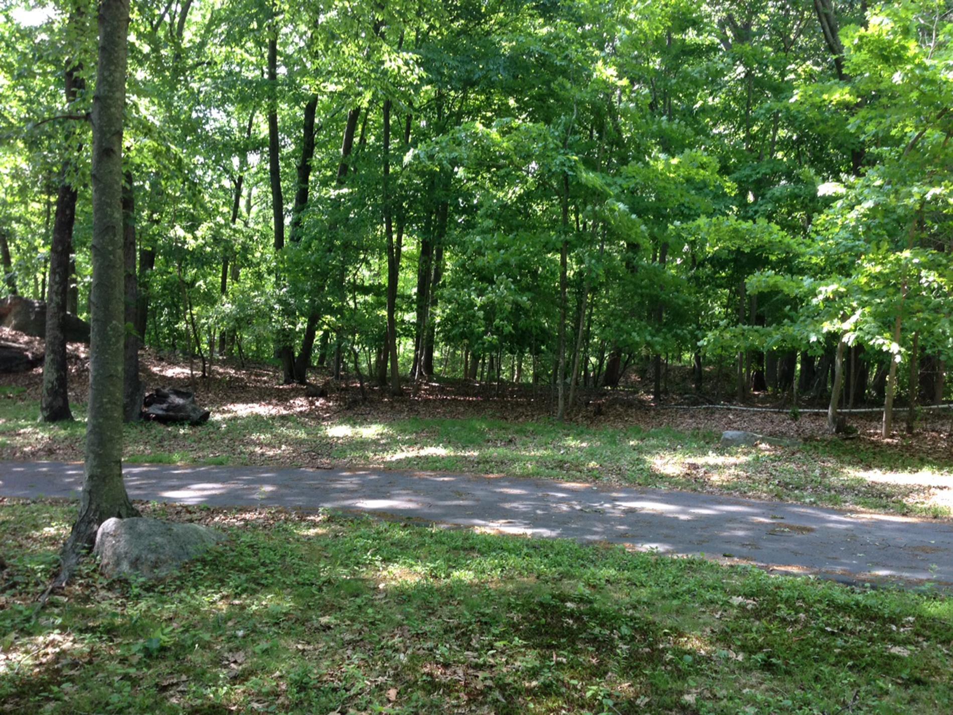 Земля для того Продажа на Fabulous Opportunity 163 Good Hill Road Weston, Коннектикут, 06883 Соединенные Штаты