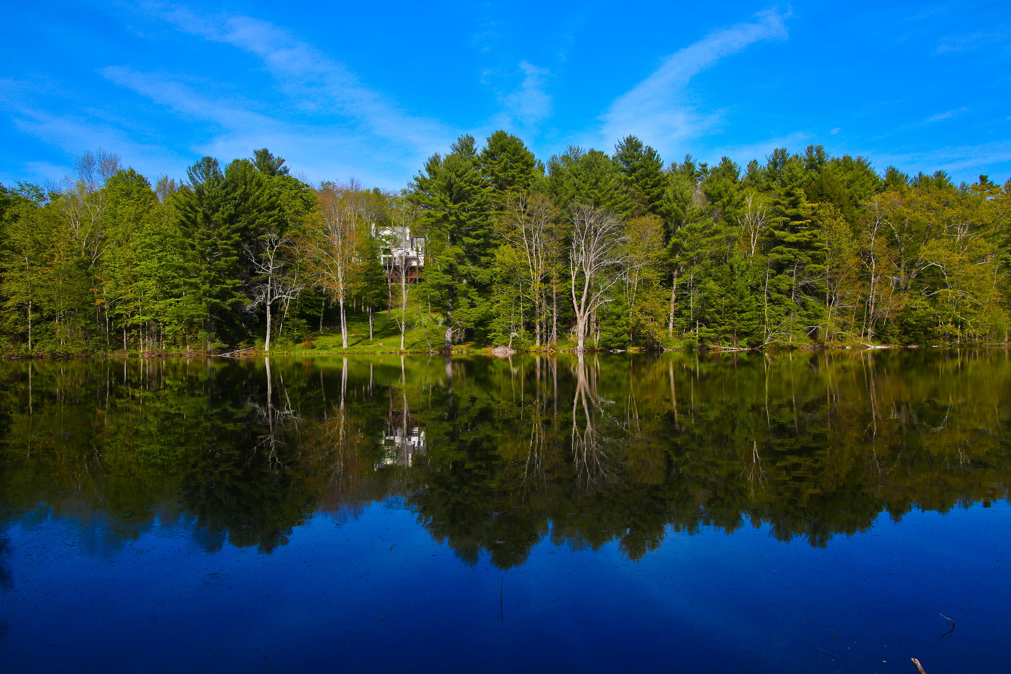 Casa Unifamiliar por un Venta en 47 Acre Country Oasis with 3 Acre Pond, Pool & Hiking & XC Ski Trails 238 Rossiter Rd Richmond, Massachusetts 01254 Estados Unidos