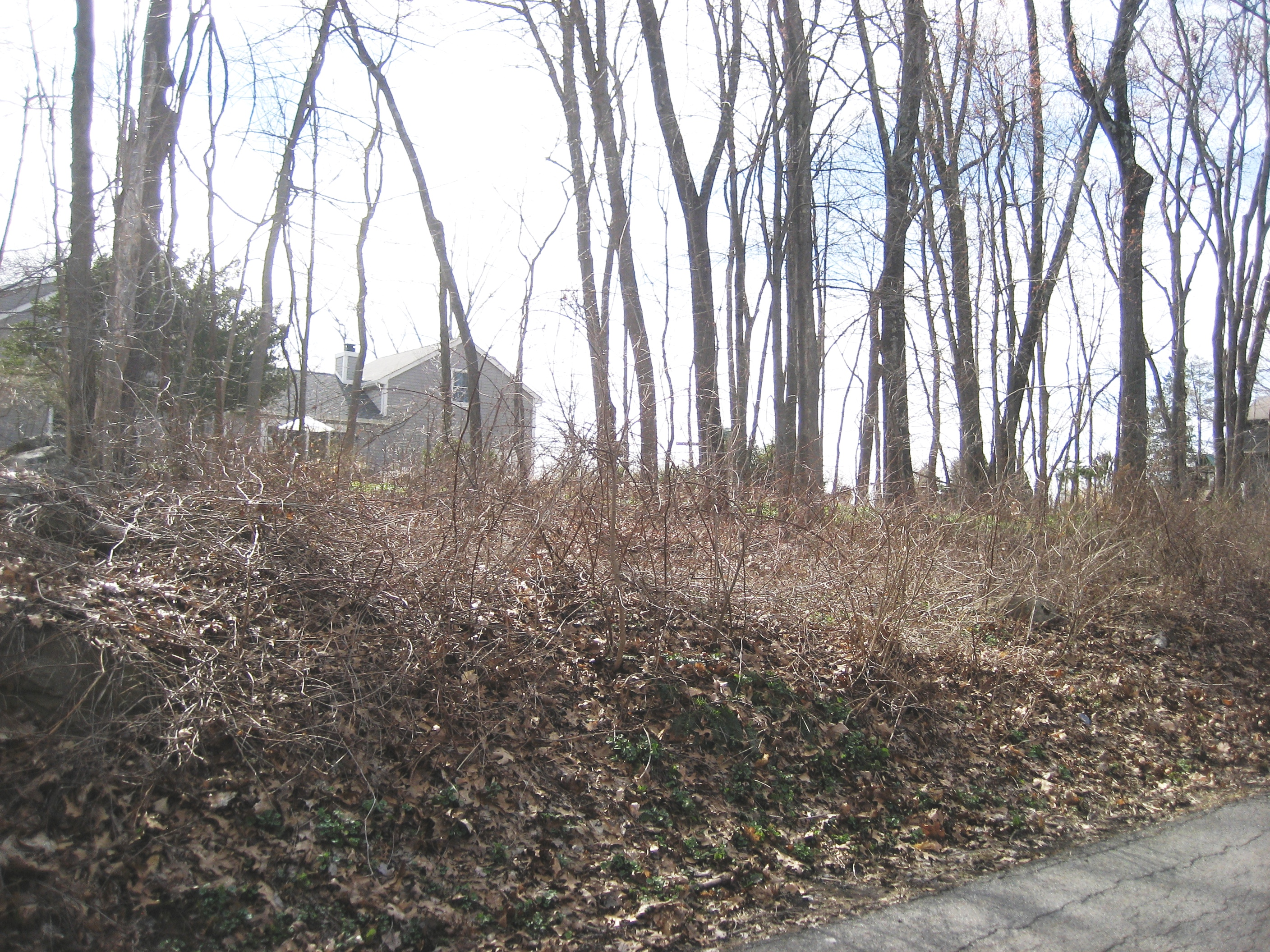 Property For Sale at Candlewood Lake Club Land