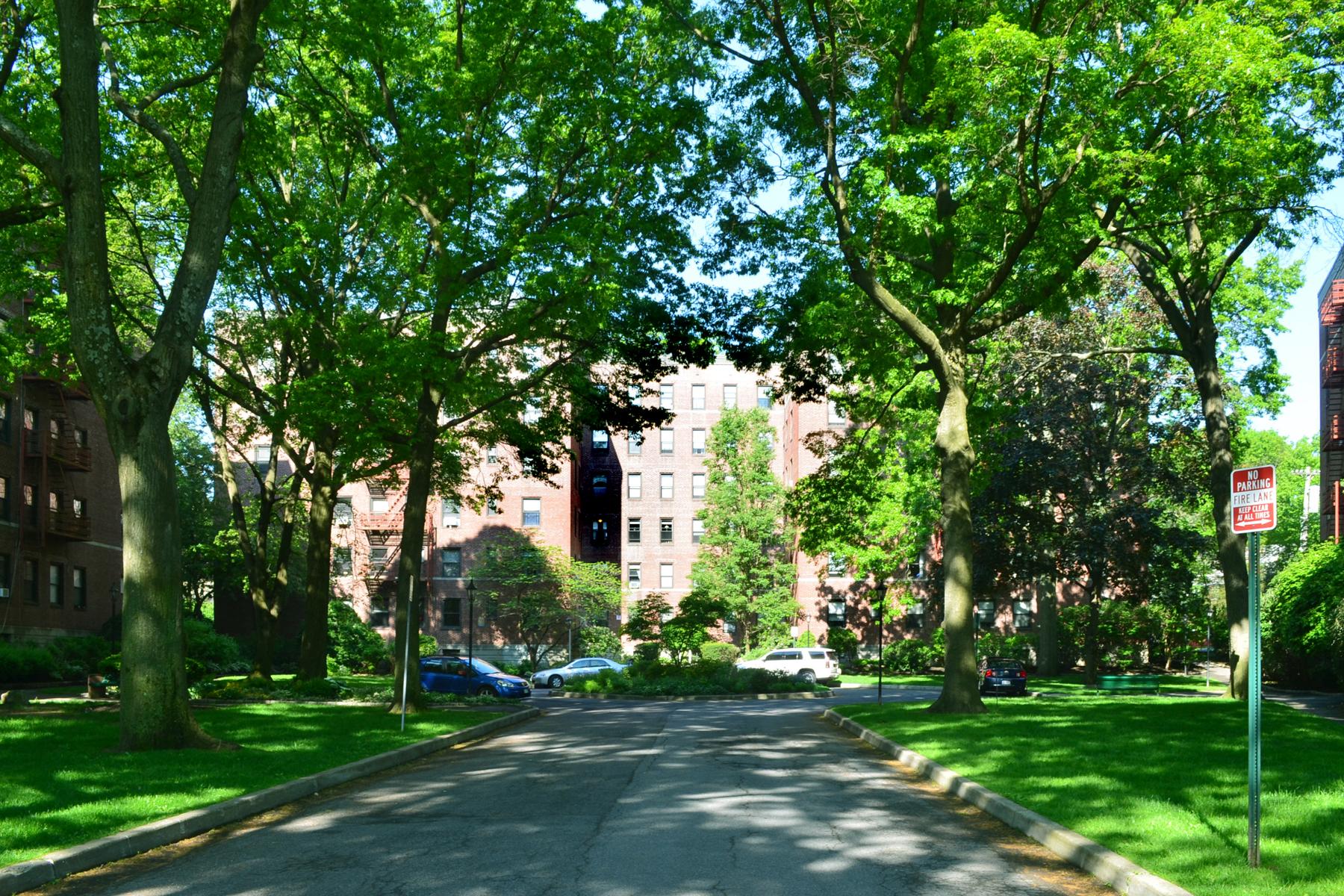 rentals property at Larchmont Acres Rental